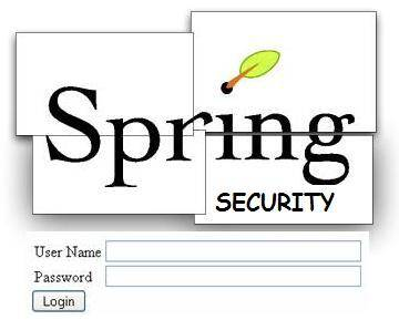 spring_security_login