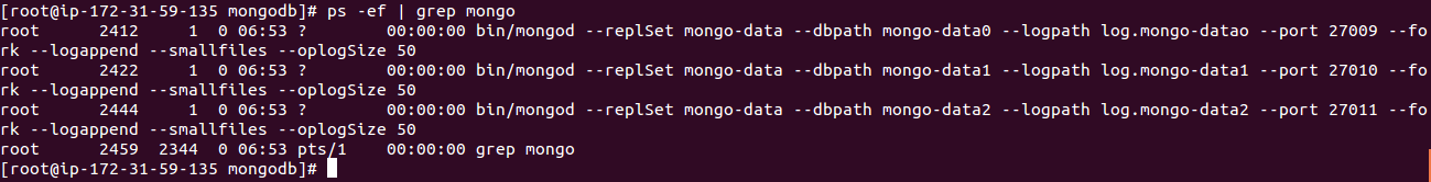Mongo_Replica_Set_Processes_4