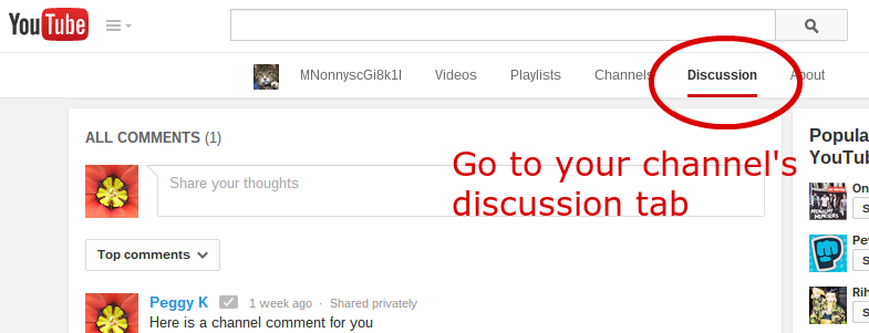 Yt discussion comment 1 edited