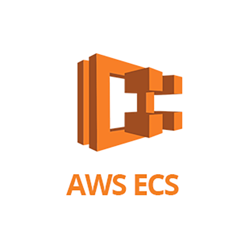 AWS ECS Agent Monitoring