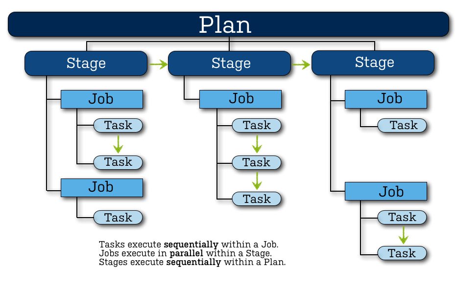 Bamboo_Plan_Anatomy