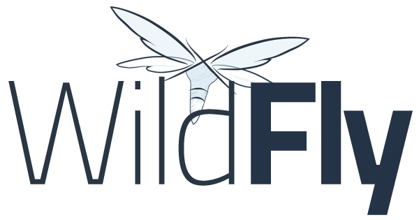 Introduction to Wildfly | TO THE NEW Blog