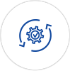 custom application development testing