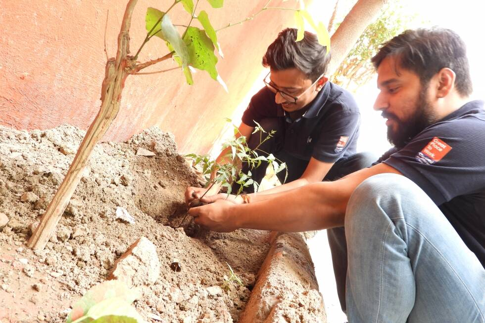 Tree Plantation Drive by Pahal